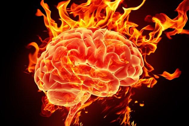 cerebro de los superdotados