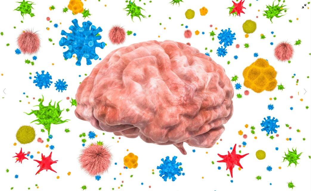Superdotados y virus mental: Origen y evolución